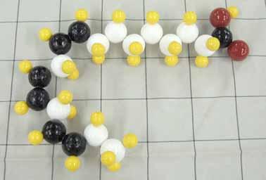 αーリノレイン酸.jpg
