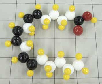 γーリノレン酸.jpg