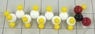 カプリン酸.jpg