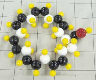 ドコサヘキサエン酸DHA.jpg