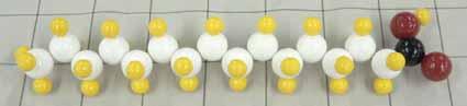 パルミチン酸.jpg