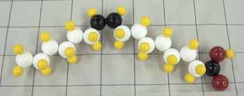 パルミトレイン酸.jpg