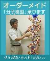 オーダーメイド分子模型承ります